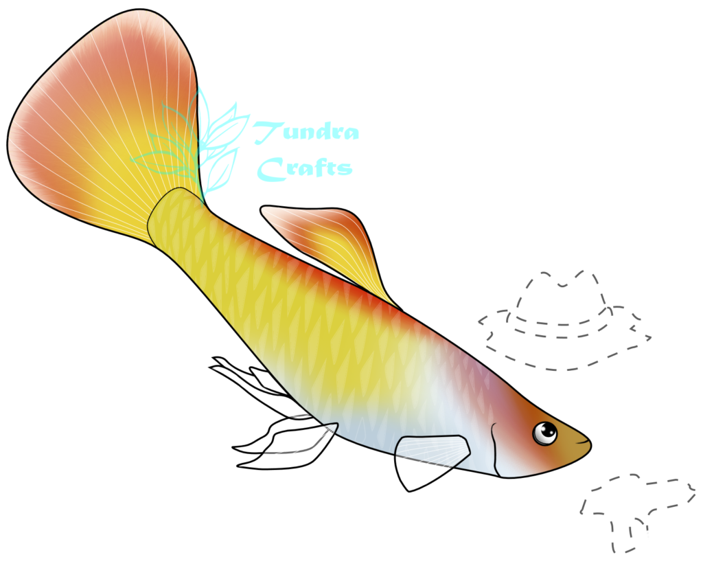 A gold and orange guppy fish, with transparent fins. He is looking up towards outlines of his treasures - a cowboy hat and a pistol